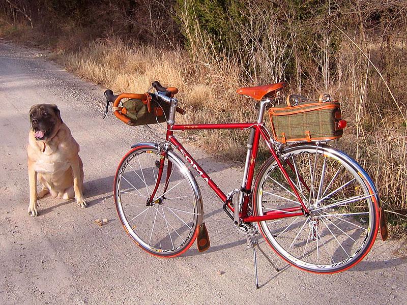 Cc Bicycle Gallery Bill Rhodes Soma Speedster